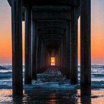 Фото приколы Идеальные ракурс и момент снимка (43 фото)