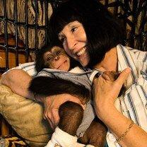 Чудные обезьяны-хулиганы (30 фото)