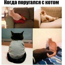 Фото приколы То чувство, когда убрался в квартире (25 фото)