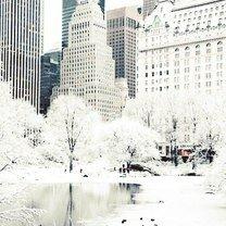 Фото приколы Снегопады и морозы в Канаде и Америке (30 фото)