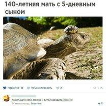 Фото приколы Остроумие и приколы в комментариях (24 фото)
