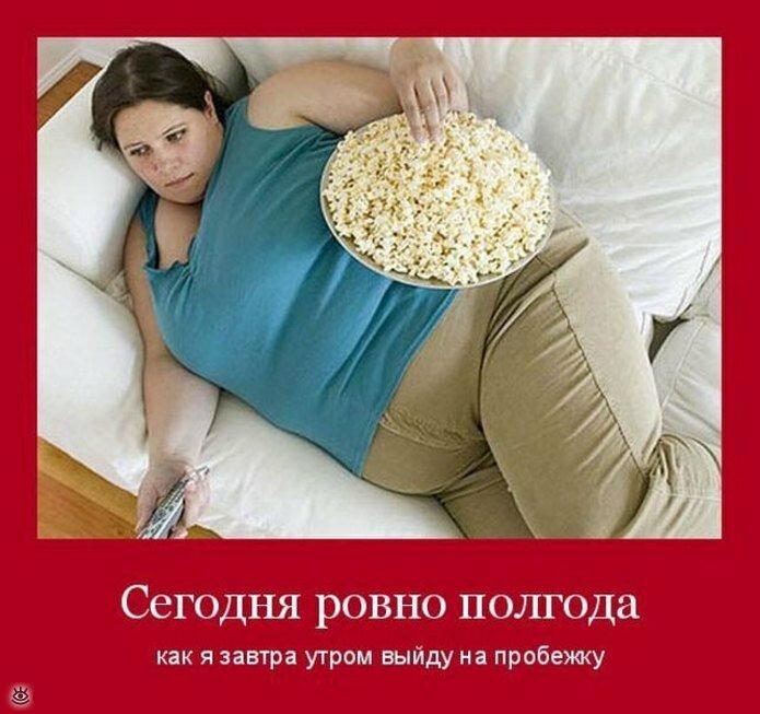 Картинка мемом, жирная картинки приколы