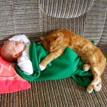Коты и ребятишки фото приколы