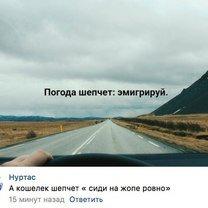 Погода шепчет: эмигрируй! фото приколы
