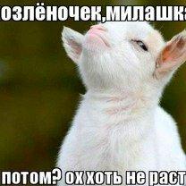 Солянка фото позитивчика смешных фото приколов