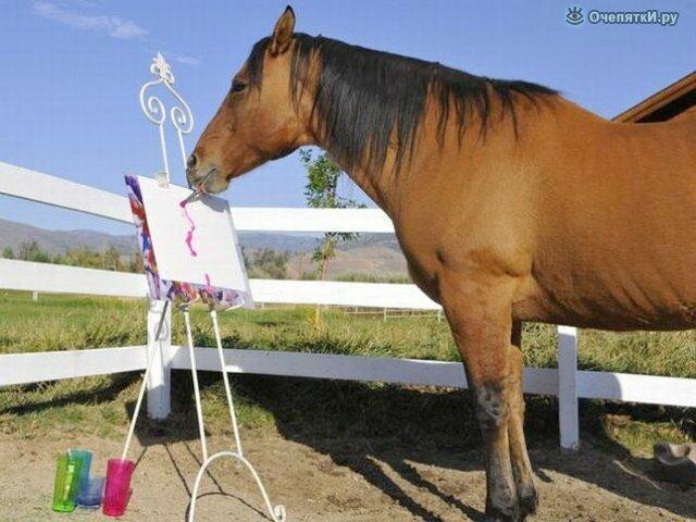Лошади 19