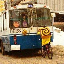 Смешное в транспорте фото приколы