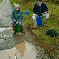 Ирландские прикольные снимки фото приколы