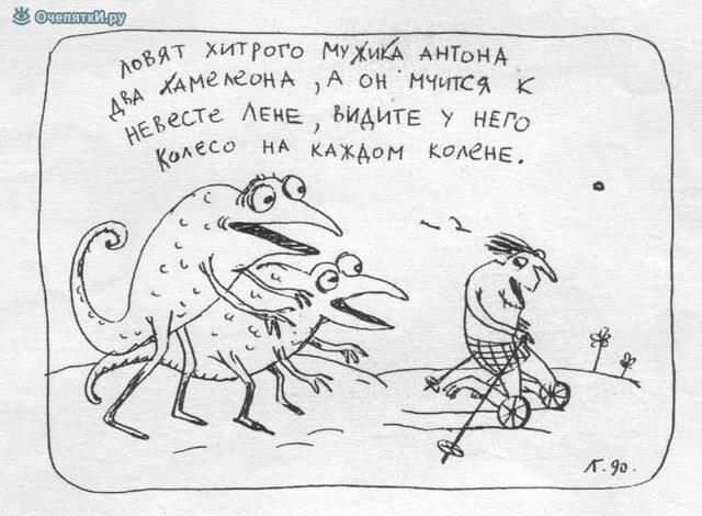 Реальность в карикатурах 15