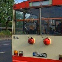 Чудаки-пассажиры фото приколы