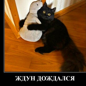 Ждун дождался! фото приколы