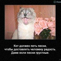 Что же делает кот?