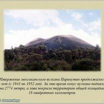 Фото приколы Факты в картинках (25 фото)