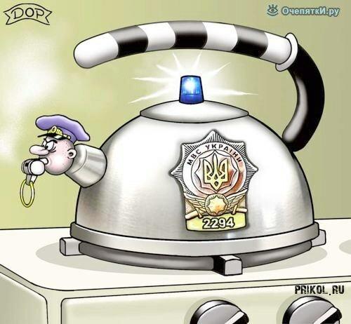 Политические карикатуры 6