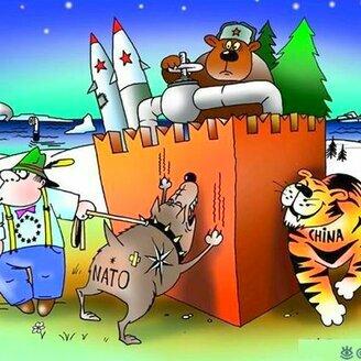 Политические карикатуры смешных фото приколов