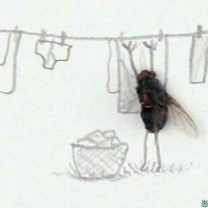Необычные картины с мухами