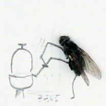 Необычные картины с мухами фото приколы