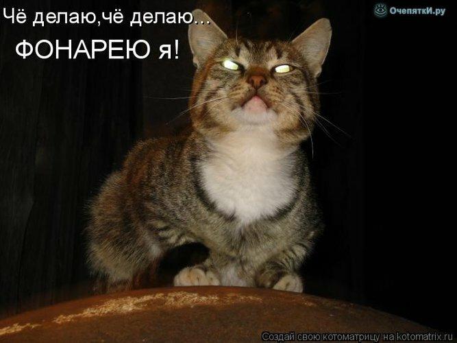 Прикольная котоматрица 14