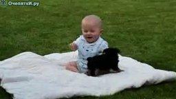 Смотреть Щенок поборол малыша