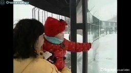 Зимний позитив от панды смотреть видео прикол - 1:04