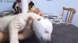 Смотреть Белый медведь в детстве