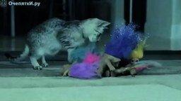 Смотреть Котёнок против троллей