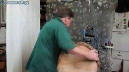 Смотреть Торшер из деревянного пня