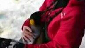 Смотреть Любвеобильный пингвин