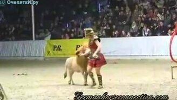 Смотреть Пони-лев в цирке