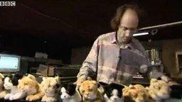 Смотреть Играем на кошках