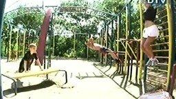 Эротичная гимнастика во дворе смотреть видео прикол - 1:53