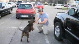 Смотреть Собака обожает своего хозяина