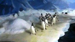 Смотреть Толпа пингвинов и лазер