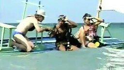Бразильский розыгрыш с акулой смотреть видео прикол - 2:43
