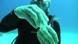 Смотреть Что, если разбить яйцо в океане?