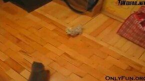 Смотреть Котёнок-нинздя против игрушки