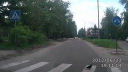 Голубь пешеход смотреть видео прикол - 0:23
