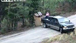 Смотреть Вытащили медвежат из мусорного бака