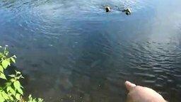 Смотреть Тренирует рыболовов