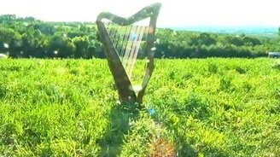 Смотреть Ветер играет на арфе