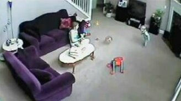 Кошка мстит за разбитую миску смотреть видео прикол - 1:55