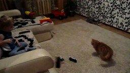 Мальчишка против вредного кота смотреть видео прикол - 1:06