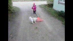 Смотреть Малыш с граблями и собака
