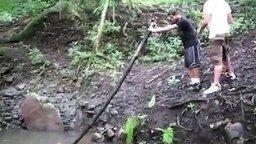 Смотреть Неудачный прыжок через ручей
