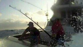 Опасная рыба-меч смотреть видео прикол - 2:34