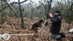 Пёс, балансирующий на верёвке смотреть видео прикол - 1:22