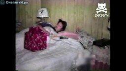 Подарок ранним утром в постель смотреть видео прикол - 0:56