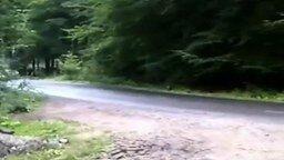 Несказанное везение на гонках смотреть видео прикол - 0:14