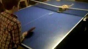 Смотреть Кошачий теннис