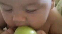 Смотреть Ребёнок и яблоко